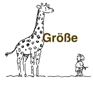 Größe_Giraffe